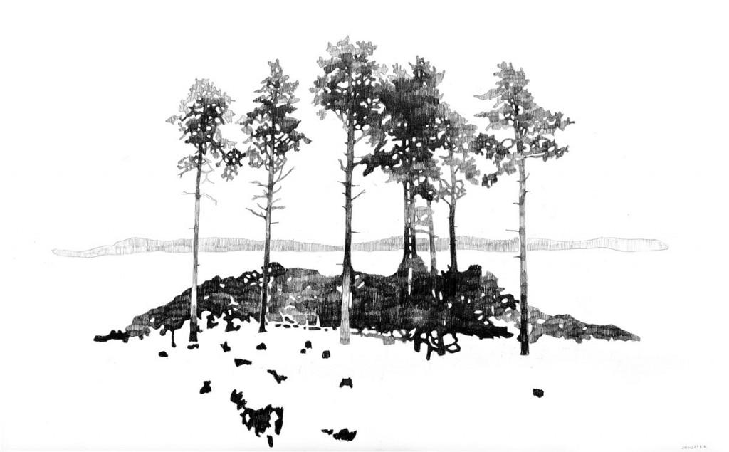 Teckning av kalhygge i Bottna, Bohuslän. Blyerts